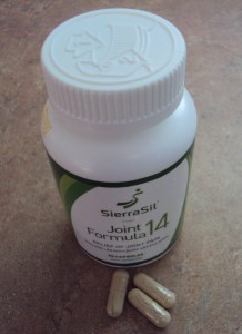 SierraSil Joint Support {A Review}