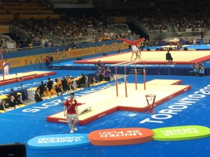 My 2015 Pan Am Games Experience