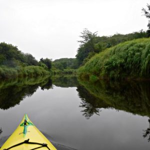 Kayaking On The Annapolis River